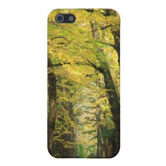 イチョウのBilobaの木 iPhone 5 カバー