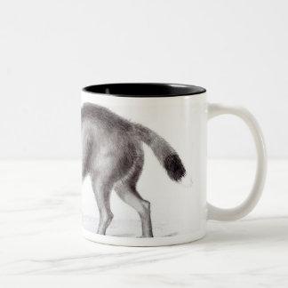 イヌ属Antarcticus ツートーンマグカップ