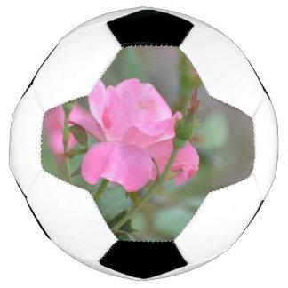イラクのパステル調ピンクのバラ サッカーボール