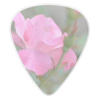 イラクのパステル調ピンクのバラ ホワイトデルリン ギターピック
