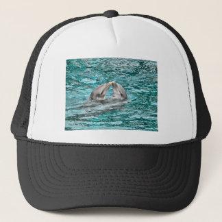 イルカのキス キャップ