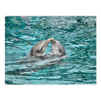 イルカのキス ポストカード