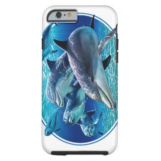 イルカのギア ケース