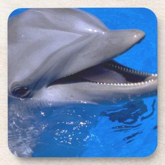 イルカのコースターセット コースター