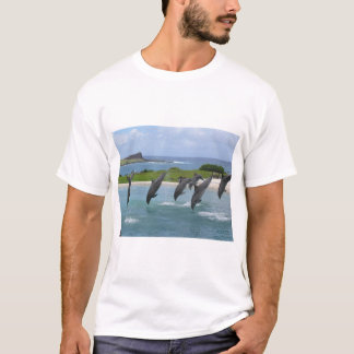 イルカのネズミイルカ Tシャツ