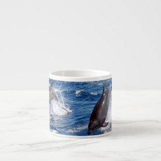 イルカの冒険 エスプレッソカップ