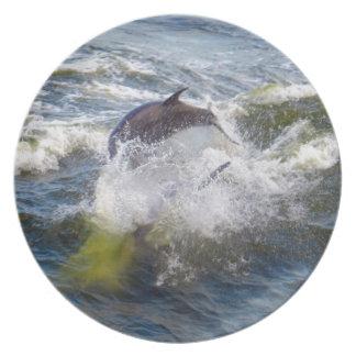 イルカの支持者のボート プレート