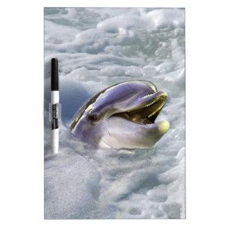 イルカの最も最高のなスマイル ホワイトボード