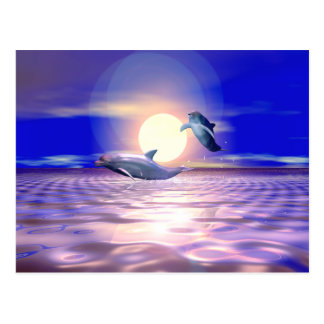 イルカの転換 ポストカード