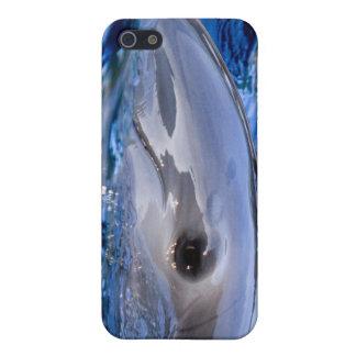 イルカのiphone 4gケース iPhone 5 case