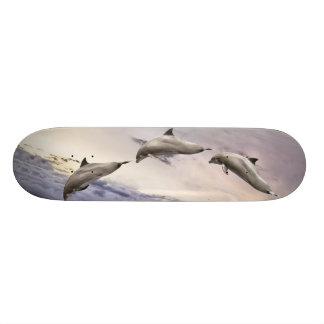 イルカ スケートボード