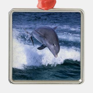 イルカ、壮大なBahama跳んでいる、バハマは メタルオーナメント
