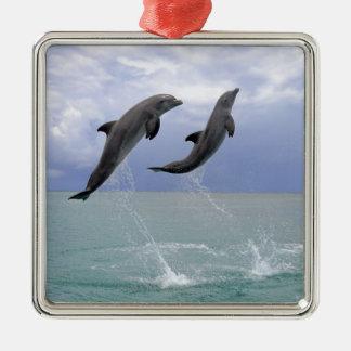 イルカ  Delfin (総体のTuemmler) メタルオーナメント