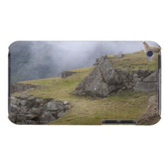 インカ人台地の中のラマ(ラマ僧のglama)の Case-Mate iPod touch ケース