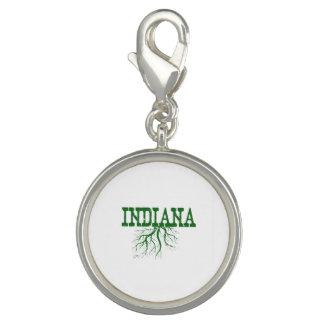 インディアナの根 チャーム