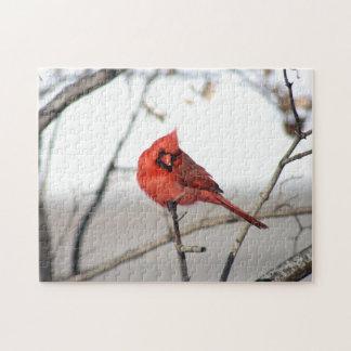 インディアナの(鳥)ショウジョウコウカンチョウ ジグソーパズル