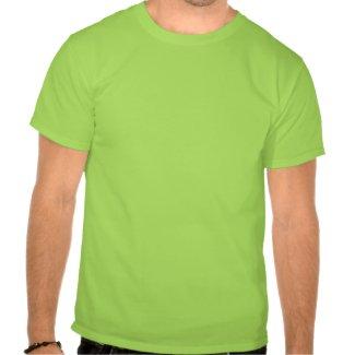 インドのシマウマ T-シャツ