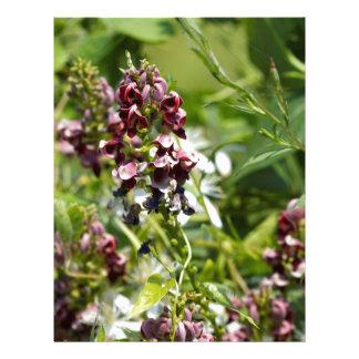 インドのポテトの野生の花 レターヘッド