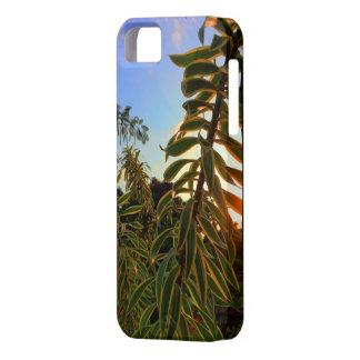 インドの歌の後ろのハワイの太陽セット iPhone SE/5/5s ケース