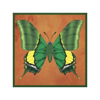 インドの蝶の皇帝 キャンバスプリント