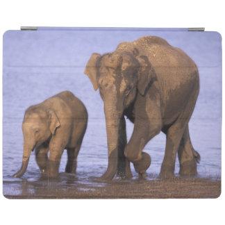 インドのNagarholeの国立公園。 アジアゾウ iPadスマートカバー