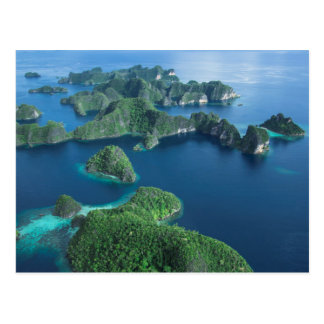 インドネシア、西のパプア。 支配者Ampatのアンテナ ポストカード