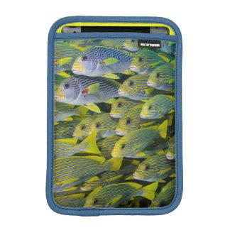 インドネシア。 魚の教育 iPad MINIスリーブ
