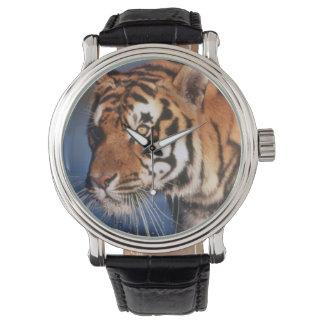 インド、ベンガルトラ(ヒョウ属チグリス川) 2 腕時計