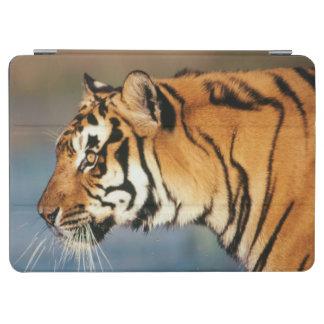 インド、ベンガルトラ(ヒョウ属チグリス川) 4 iPad AIR カバー