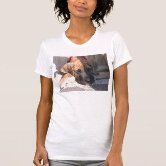インド Tシャツ