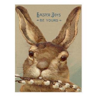 イースターのウサギのネコヤナギの花柄 ポストカード