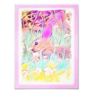 イースターのウサギの写真のプリント フォトプリント