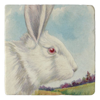 イースターのウサギの白い白子分野 トリベット