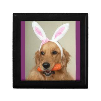 イースターのウサギの耳を搭載する間抜けなゴールデン・リトリーバー犬 ギフトボックス