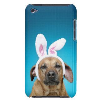イースターのウサギの耳を身に着けている犬のポートレート Case-Mate iPod TOUCH ケース