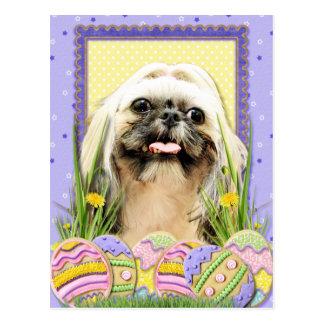 イースターエッグのクッキー-シーズー(犬) Tzu -オパール ポストカード