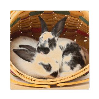イースターバスケット2の若いレックスのウサギ ウッドコースター