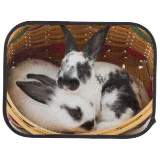 イースターバスケット2の若いレックスのウサギ カーマット
