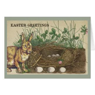 イースター挨拶ウサギ、卵、巣、草、クローバー カード