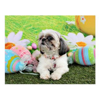 イースター-シーズー(犬) Tzu - Sophie ポストカード