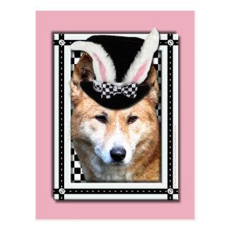 イースター-バニー愛します-ディンゴ ポストカード