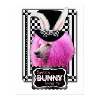イースター-バニー愛します-プードル-ピンク ポストカード