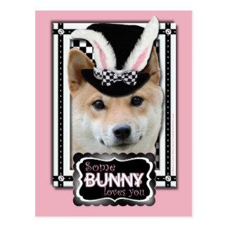 イースター-バニー愛します-柴犬 ポストカード