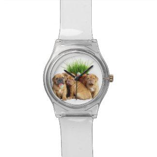 イースターDogue de Bordeaux犬 腕時計