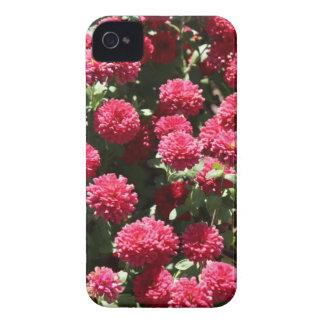 ウィチタカンザスの動物園の花 Case-Mate iPhone 4 ケース