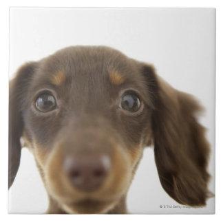 ウインナー犬(茶色) 2 タイル
