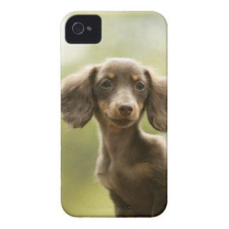 ウインナー犬(茶色) Case-Mate iPhone 4 ケース