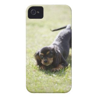 ウインナー犬(黒) 2 Case-Mate iPhone 4 ケース