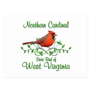 ウェストヴァージニアの基本的な鳥 ポストカード