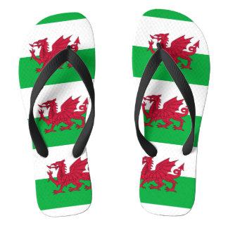 ウェールズのドラゴンの旗 ビーチサンダル